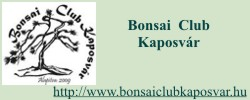 Bonsai Club Kaposvár